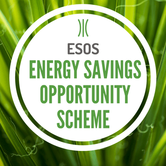 Energy Savings Opportunity Scheme (ESOS)