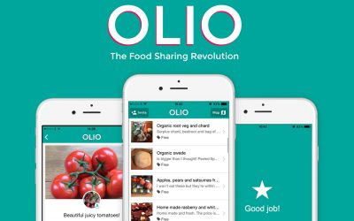 Green Element Weekly Interview with Anne-Charlotte Mornington from Olio