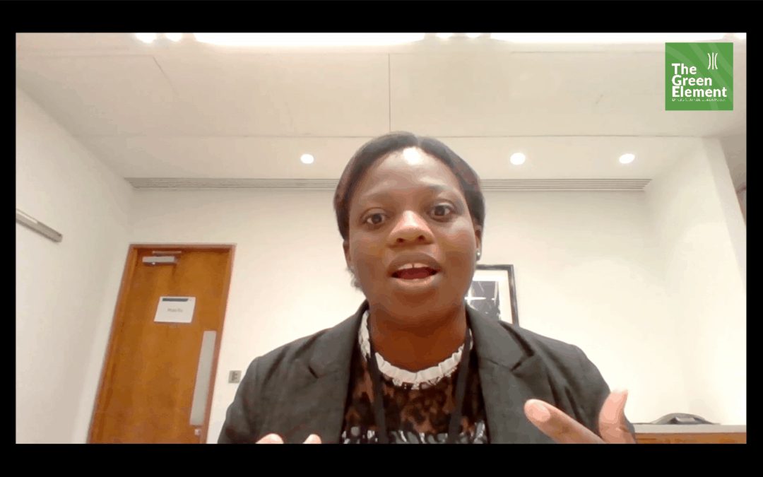 Green Element Weekly Interview with Ifeyinwa Kanu – IntelliDigest