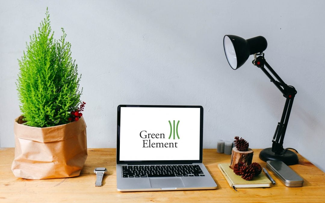 Green Element to Launch Fully Online Environmental Management System Training Course