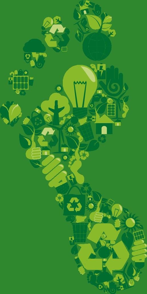 Benchmarking & Carbon Footprinting